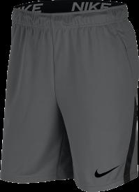 Nike Herren Short Dry 5.0